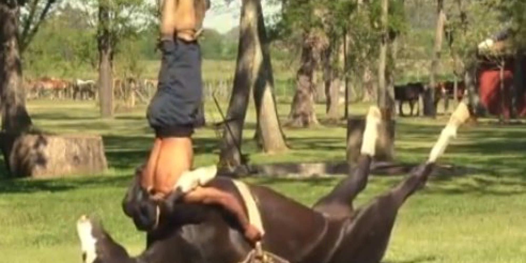 Only Horse Yoga Could Look This Peacefully Strange