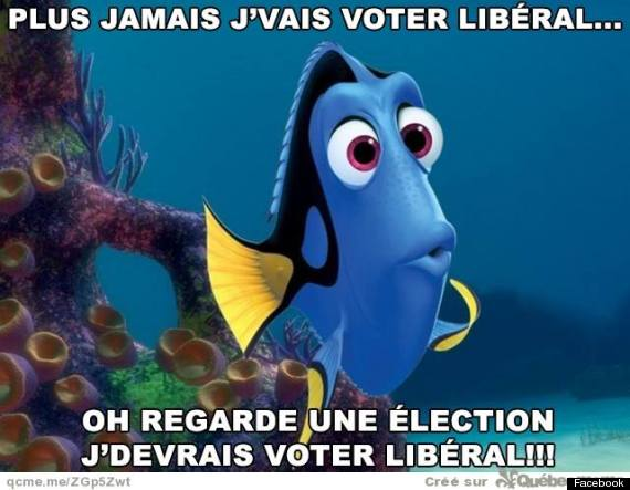 doris liberal