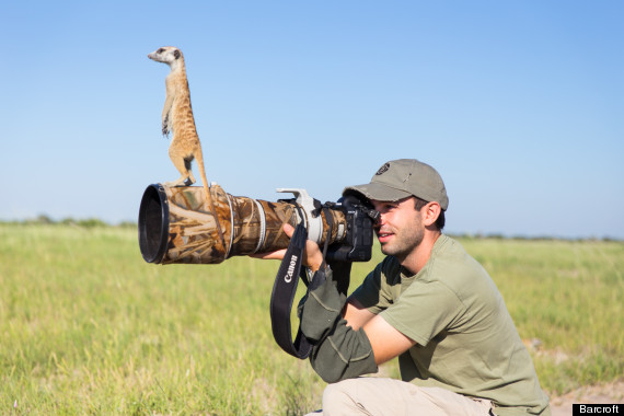meerkat camera