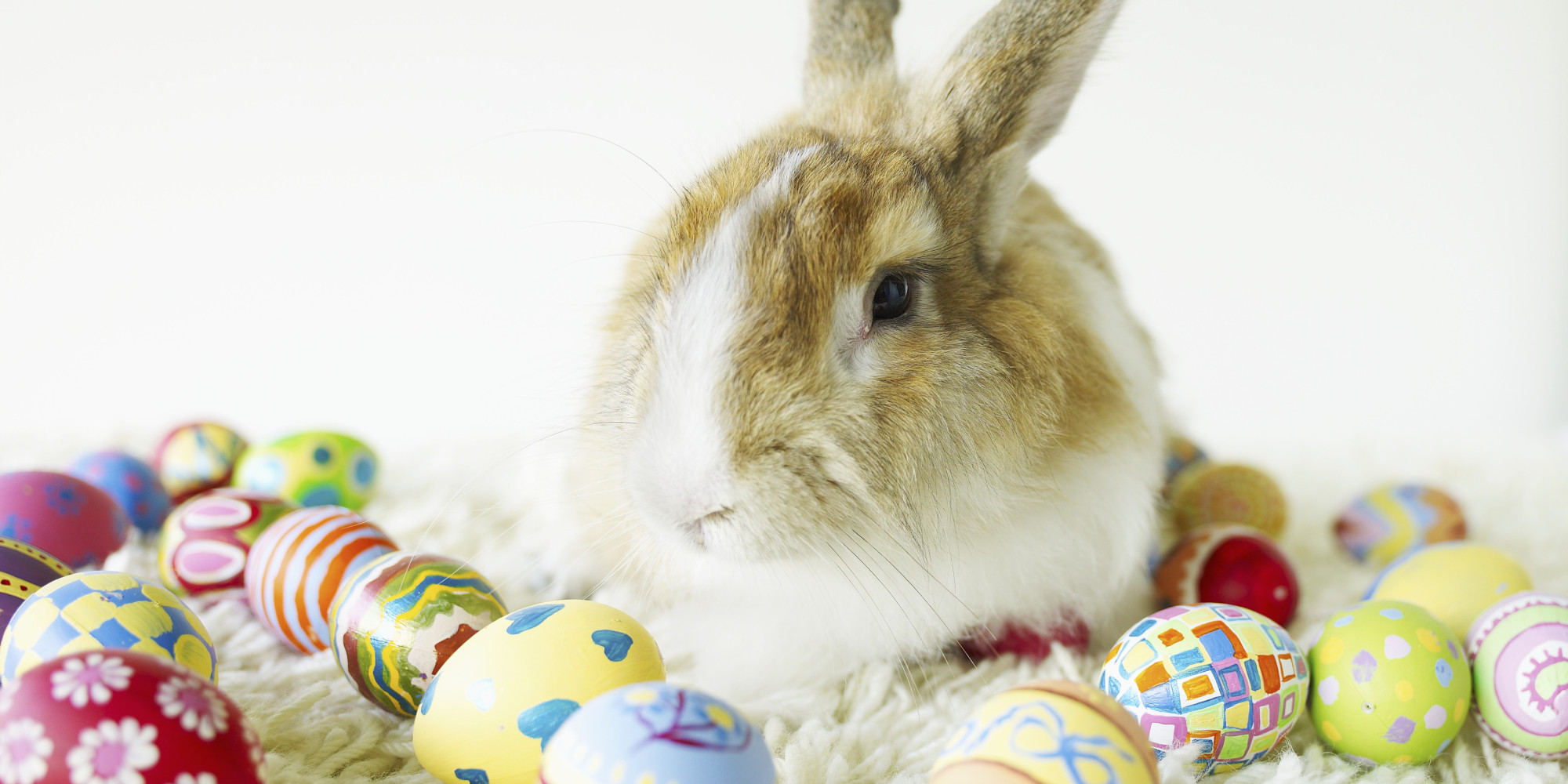 a cease and desist letter to the easter bunny huffpost
