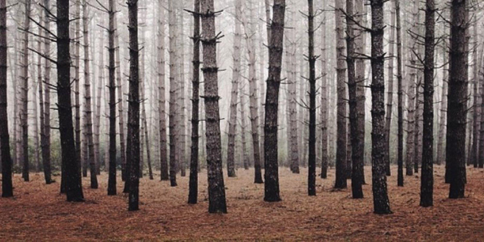 Best Nature Photographers On Instagram