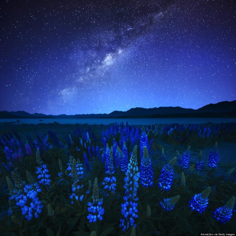 Studio Lighting Nz: Australia And New Zealand's Starry Night Skies Will Leave