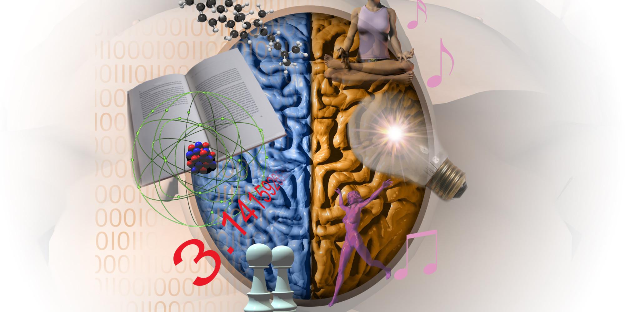 Is An Ideal Entrepreneur Right Brain Or Left Brain? | HuffPost