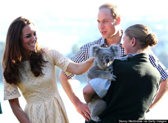kate and koala