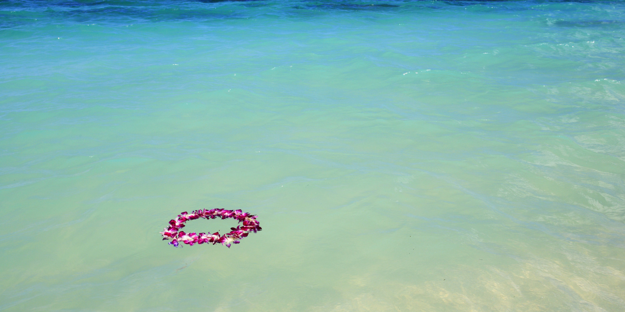 In honor of lei day everything you never knew about leis huffpost buycottarizona Gallery