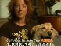 sarah mclachlan i change the channel when my aspca commercials