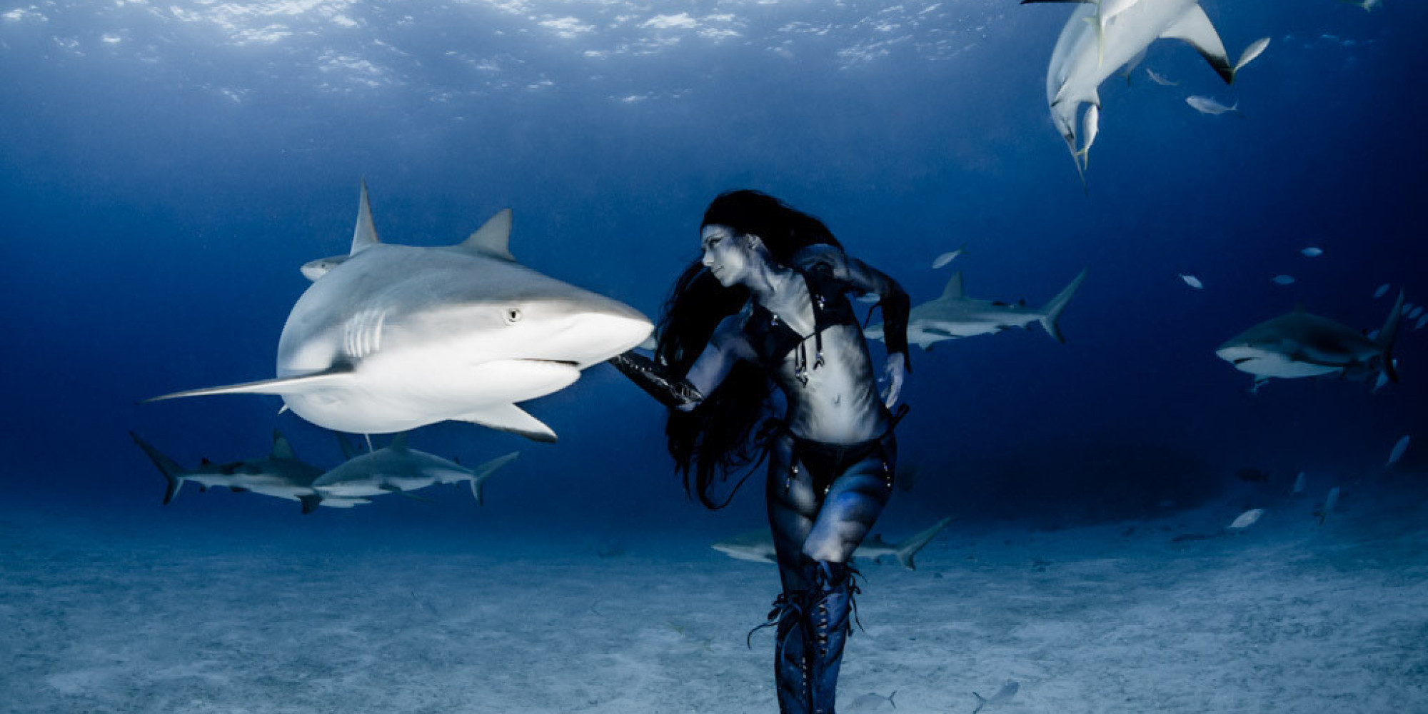 professional mermaid dances with sharks says humans are u0027the real