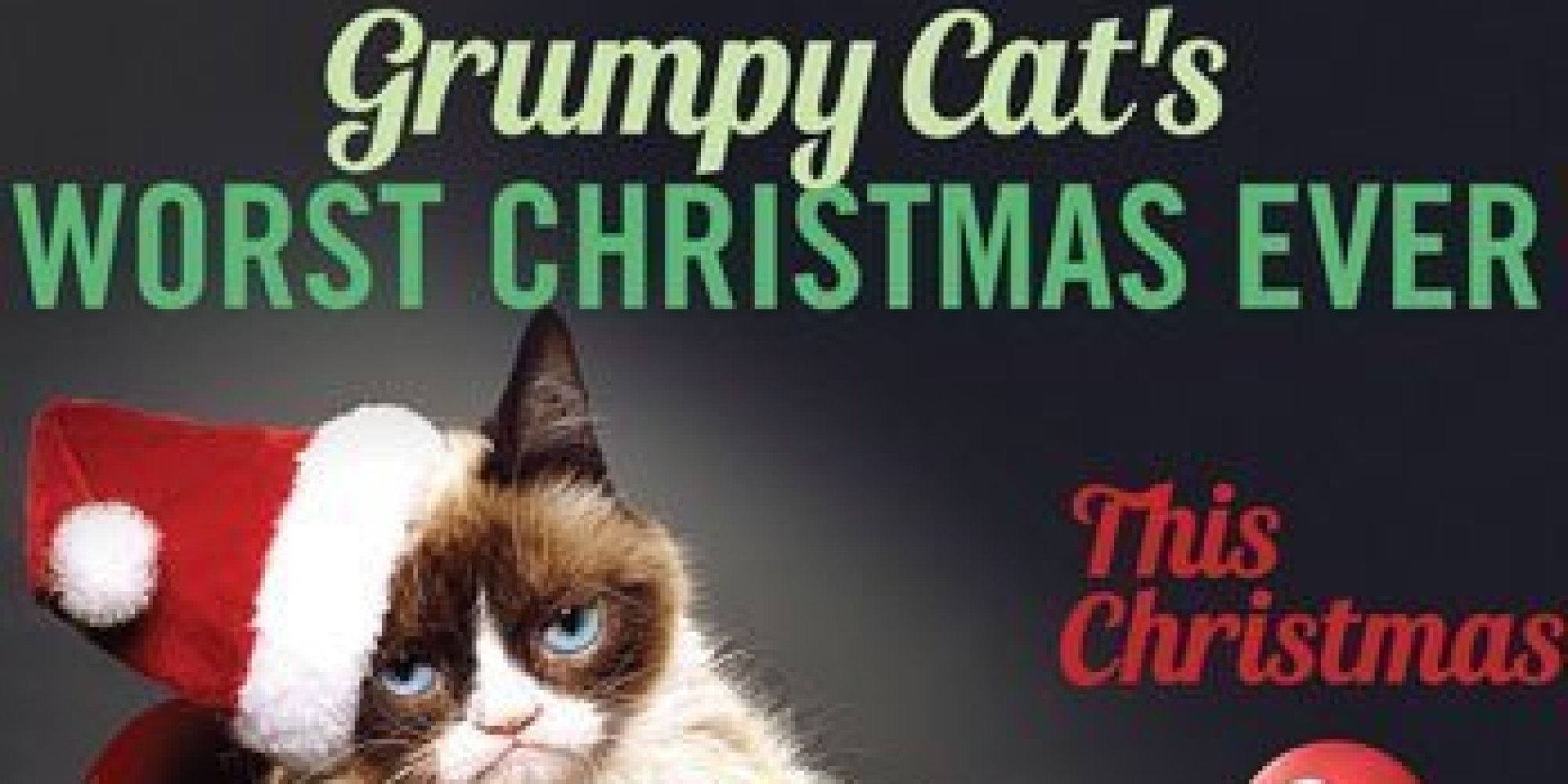 A Grumpy Cat Lifetime Movie Is Really Happening | HuffPost