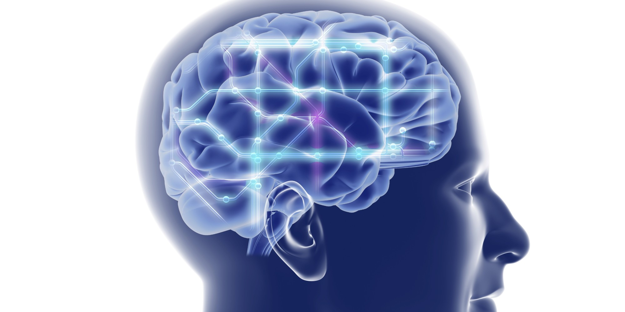 Pictures of bipolar brains Our Brain's Negative Bias Psychology Today
