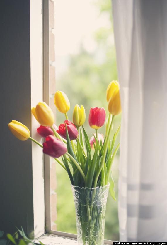 Aria condizionata? Spegnila.12 trucchi per rendere la tua casa fresca e confortevole (FOTO)