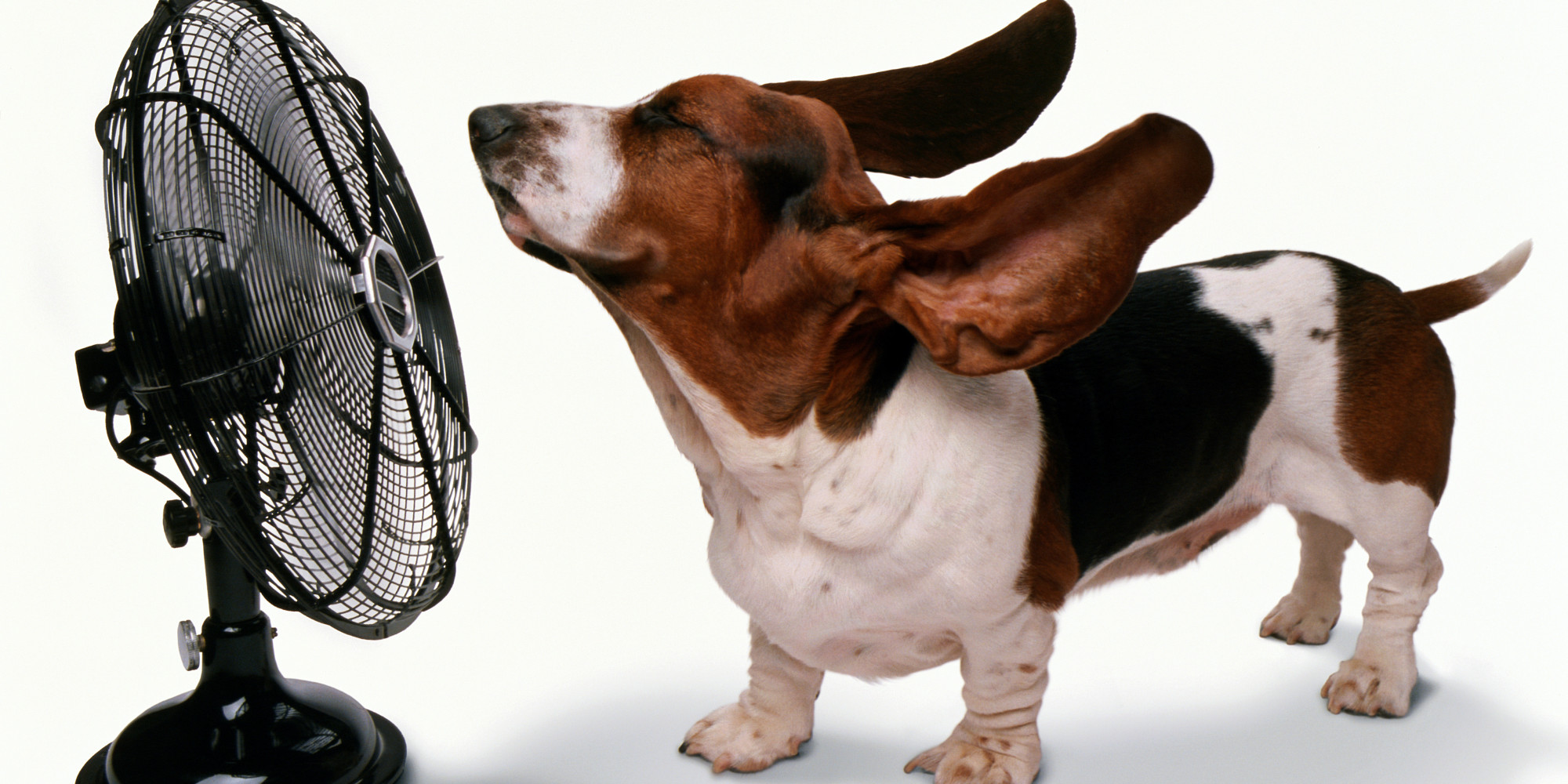 15 Brilliant Ways To Keep Your Home Cool Without Air Conditioning Huffpost