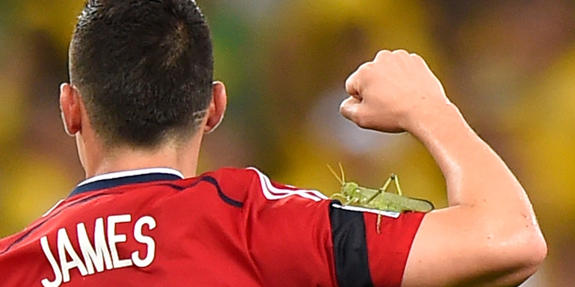 We Need To Talk About The GIANT Bug That Attacked James Rodriguez PHOTOS
