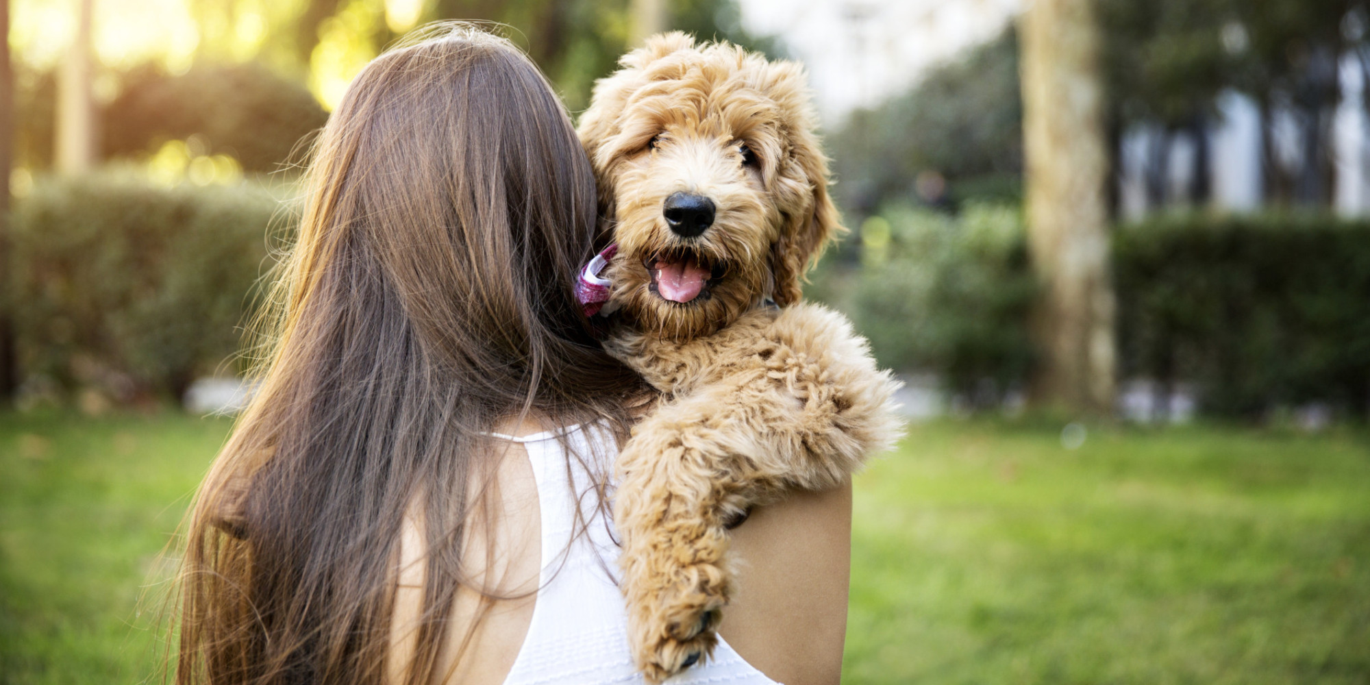 10 Things Dogs Teach Us About What Matters Most