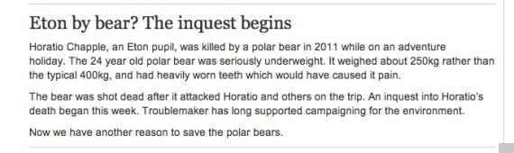 eton bear