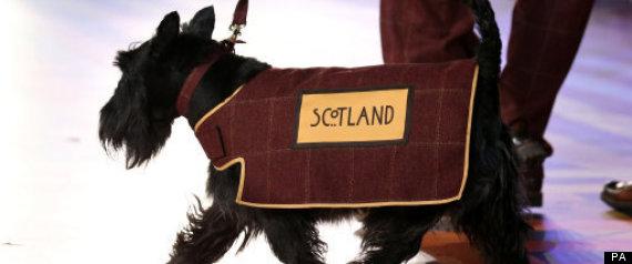 scottie dog glasgow opening ceremony