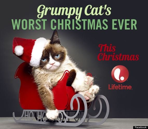 Grumpy cat to film christmas movie in vancouver grumpy cat thecheapjerseys Gallery