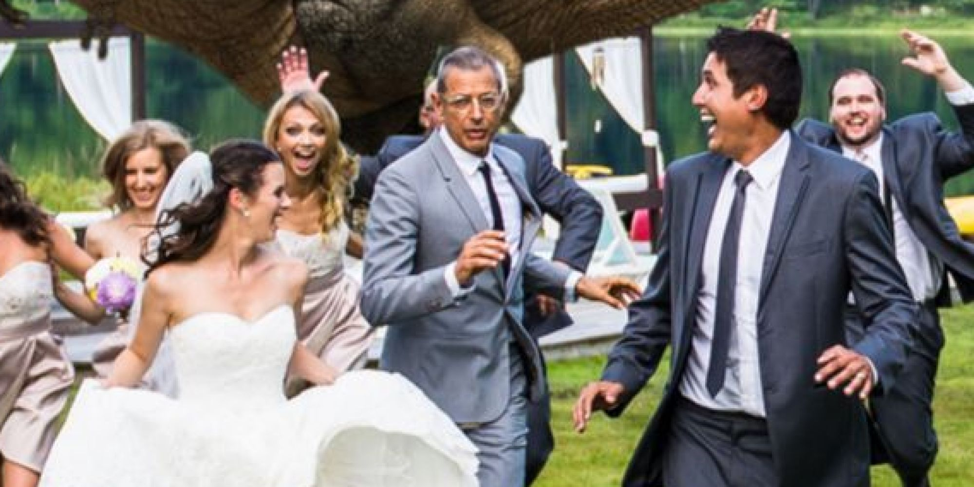 Jeff Goldblum Channels Jurassic Park For Epic Wedding Photo