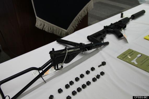 bradley friesen gun