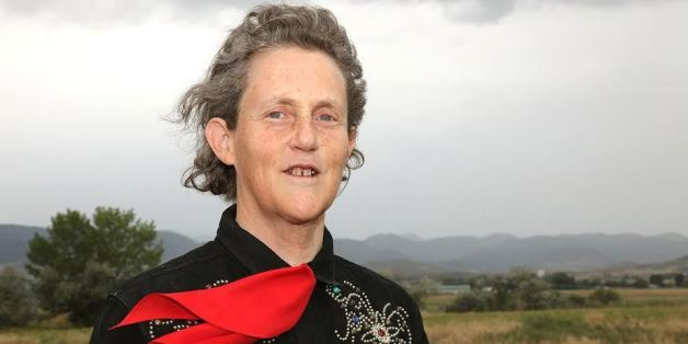 Little Things Matter Exposes Big Threat To Childrens Huffpost >> Temple Grandin On The Secret To Success For Kids With Autism Huffpost