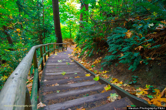 ubc wreck beach stairs