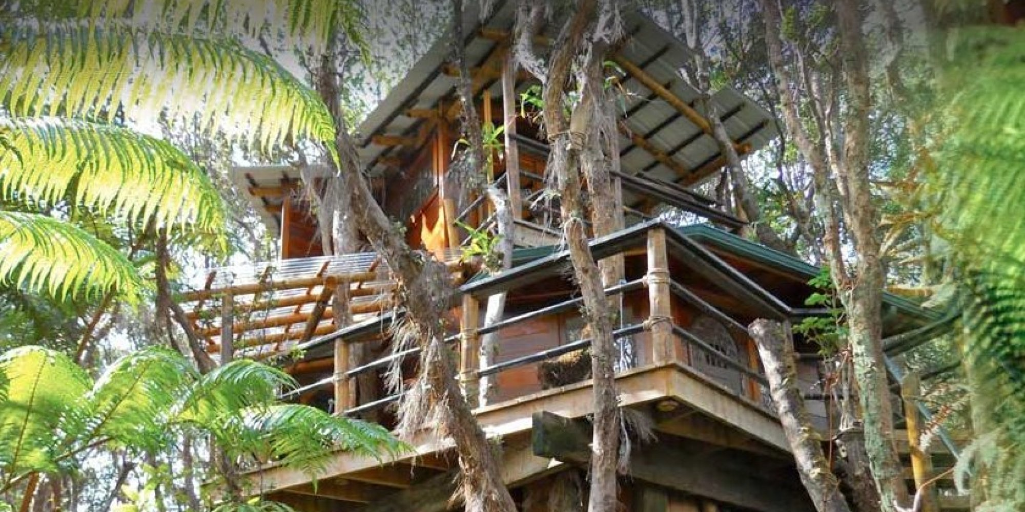 this couple left everything behind to build a treehouse in hawaii huffpost