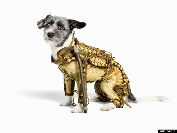 soviet canine space suit