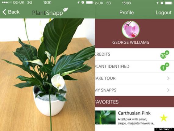 plantsnapp