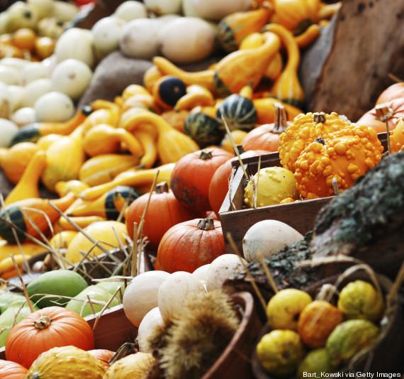 food autumn