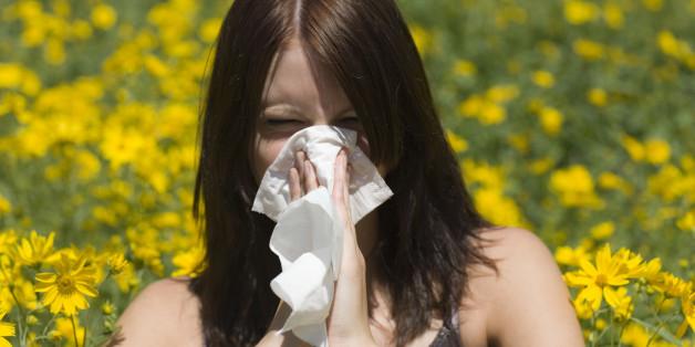 On peut remercier (ou pas) l'homme de Néandertal pour nos allergies