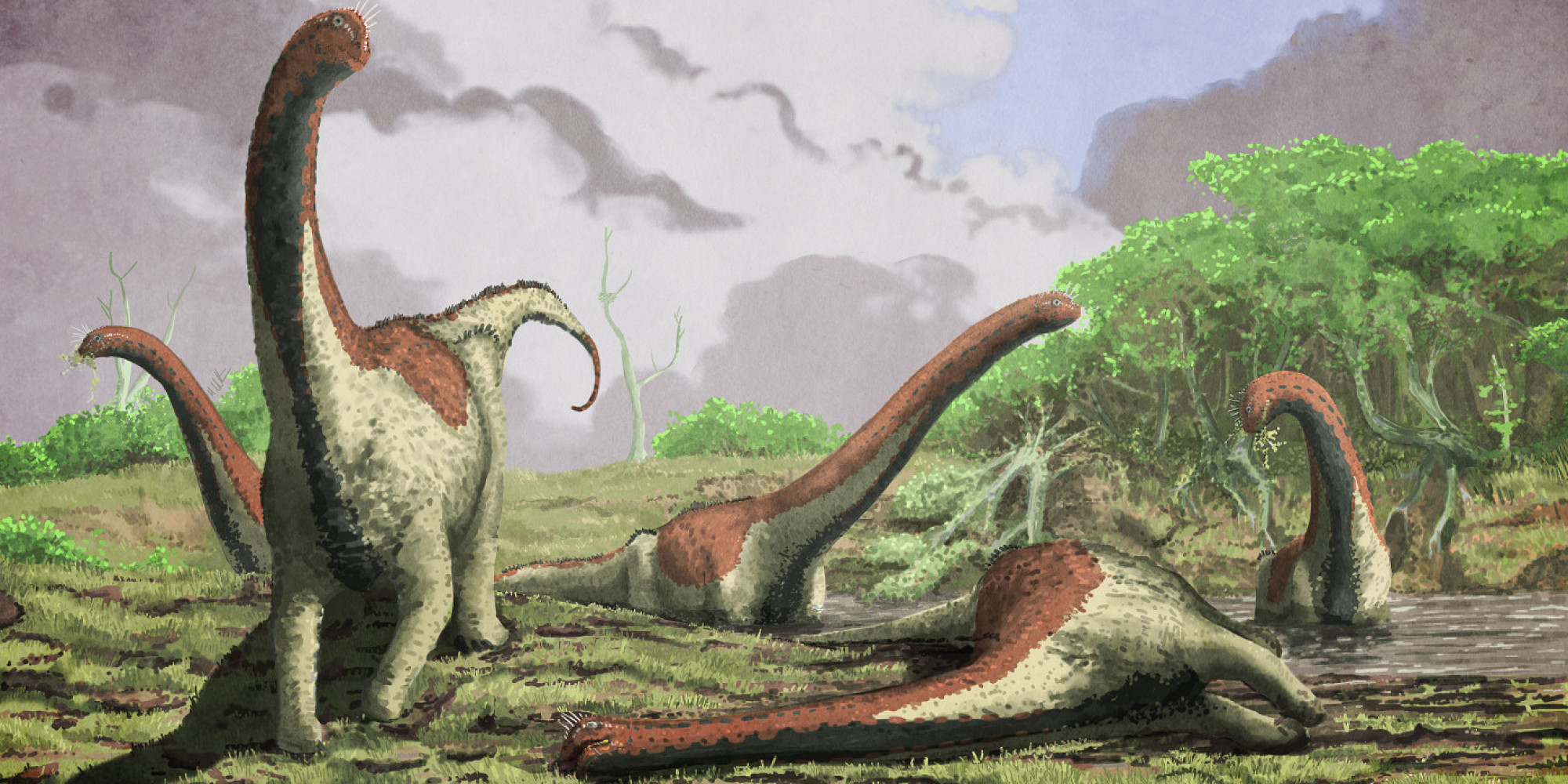 New species of massive dinosaur discovered in africa - Dinosaure diplodocus ...