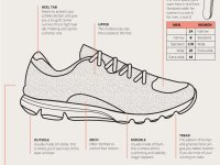 Everything You Ever Wanted To Know About Running Shoes In One Simple ...