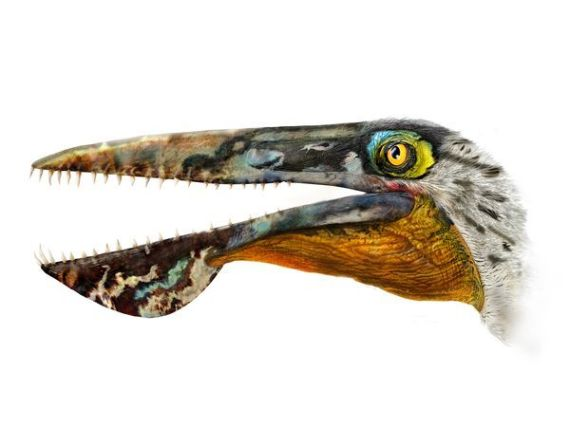 avatar dinosaure
