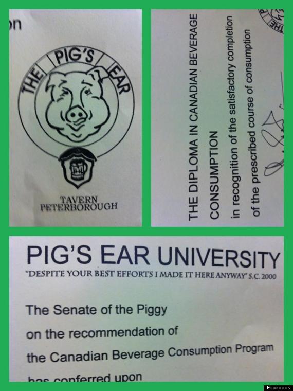 piggy diploma