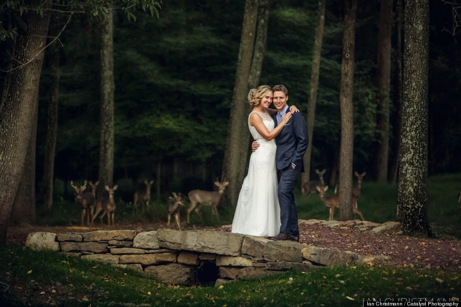 deer wedding photo
