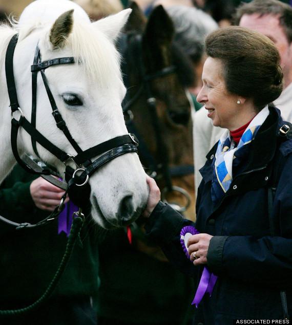 princess anne horse