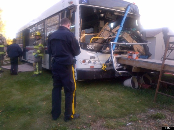 st albert bus