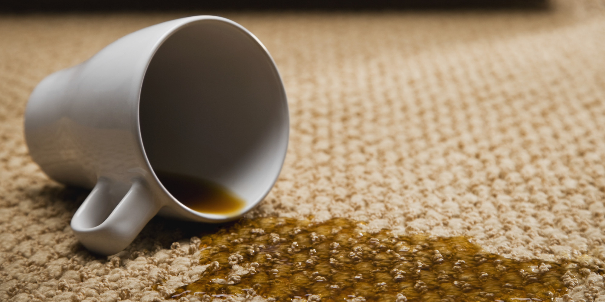 This Stain Removal Database Will Change Your Life Trust