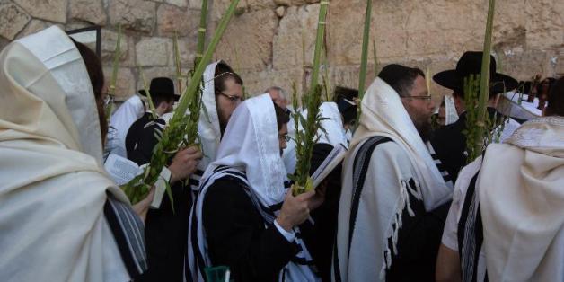 Des fidèles juifs orthodoxes en prière le 12 octobre 2014 sur l'esplanade des Mosquées à Jérusalem