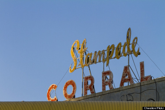 calgary stampede corral