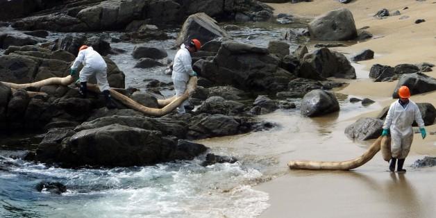 Chilean Oil Spill Devastates Local Fisheries and Wildlife
