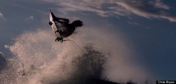 surfing 1000fps