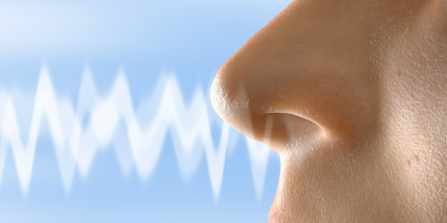 'White Noise' For Your Nose Cancels Out Nasty Odors