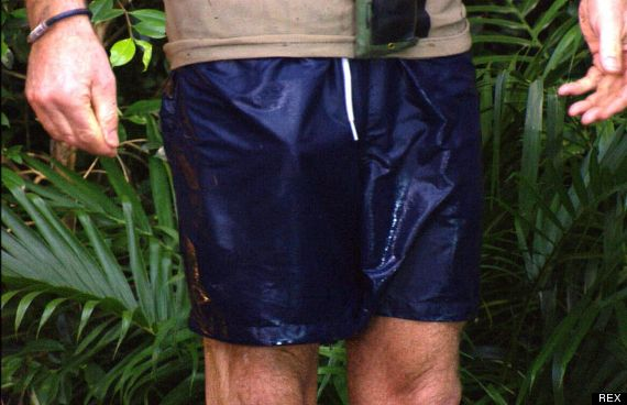 i m a celebrity review carl fogarty s trouser snake causes