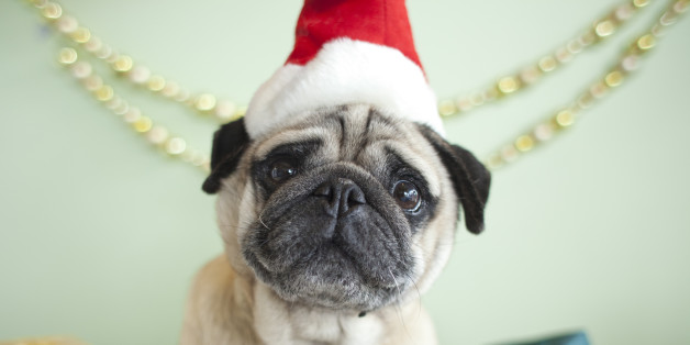 Secret Santa Gift Ideas: Christmas Presents For Your Colleagues And ...