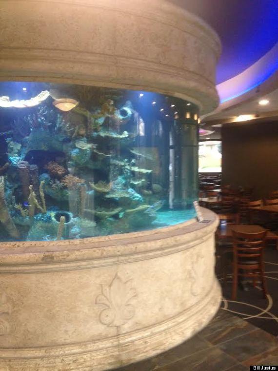 kelowna restuarant aquarium