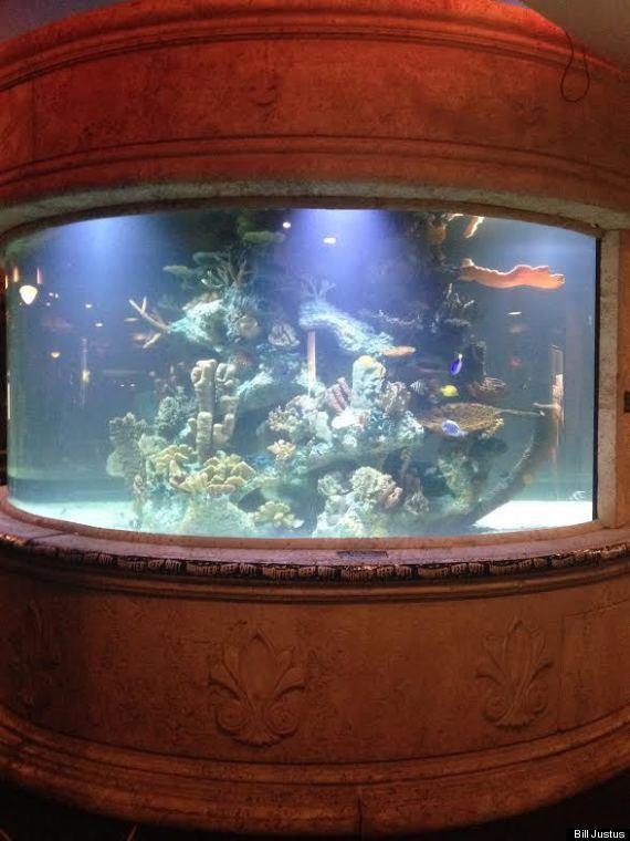 kelowna restaurant aquarium