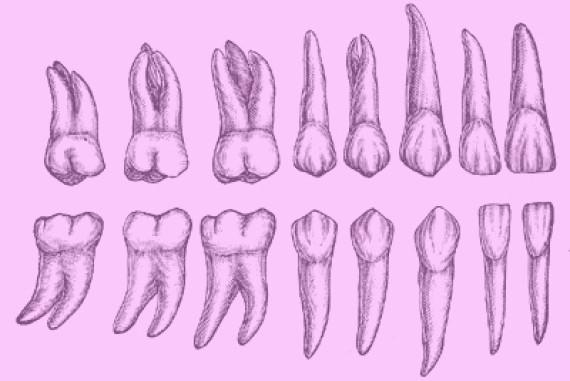6 verrückte Mythen über die Vagina: Daran glaubte man früher
