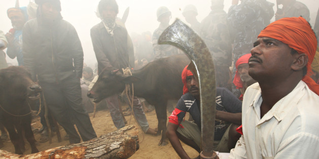 Hindu devotees gather before the start of sacrificial offerings to the Hindu goddess Gadhimai in Bariyapur village, Bara district, some 70 kilometres south of Kathmandu, on November 24, 2009. Up to a million Hindu devotees gathered November 24 in a village in Nepal to witness the slaughter of hundreds of thousands of animals in a mass sacrifice that has drawn widespread criticism. Worshippers travelled long distances, many coming from neighbouring India, to attend the two-day Gadhimai festival, which honours the Hindu goddess of power and takes place once every five years in southern Nepal. AFP PHOTO/Prakash MATHEMA (Photo credit should read PRAKASH MATHEMA/AFP/Getty Images)