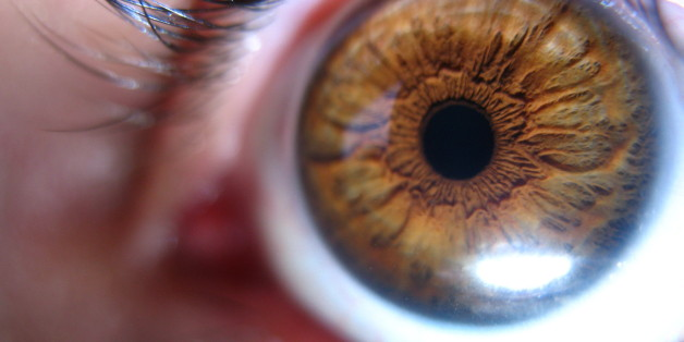 """I put the camera about 1cm from my eye.  I was hoping to see those little bug things that live in your eyelashes.  <a href=""""http://flickr.com/photos/ciarleglio/3057377649/sizes/o/"""">This picture gets large</a> (warning, it's gross)"""