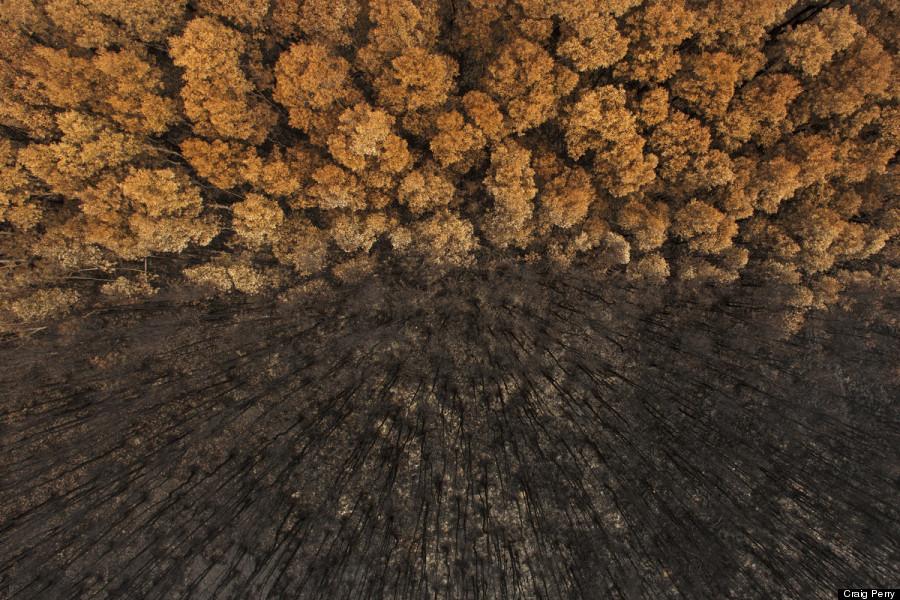 bushfire lennox head australia